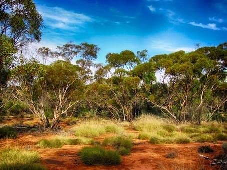 Photos from #Australia #Travel - Image 125