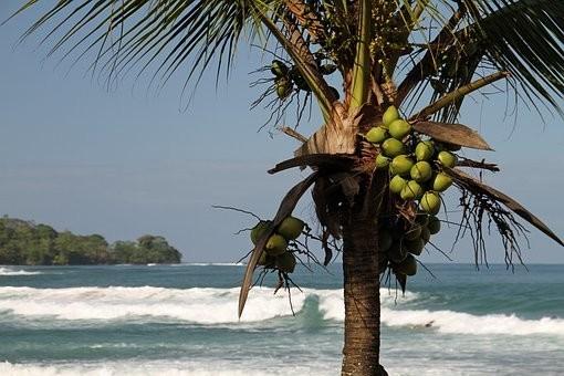 Photos from #Panama #travel - image 45