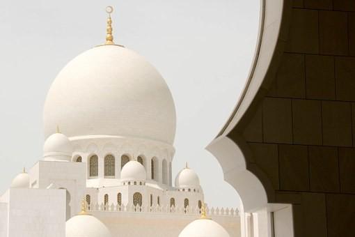 صور #مسجد #الشيخ_زايد في #أبوظبي #الإمارات - صورة 89