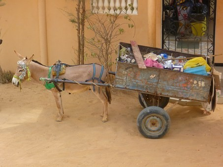 Photos from #Senegal #Travel - Image 61