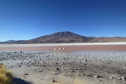 Photos from #Bolivia #Travel - Image 13