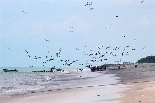 Photos from #Panama #travel - image 74