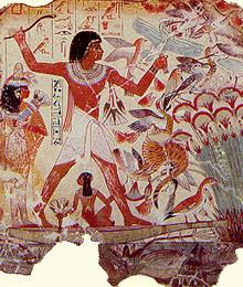 صور نادرة من #تاريخ #مصر #Egypt ال#قديم #الفراعنة - صورة 47