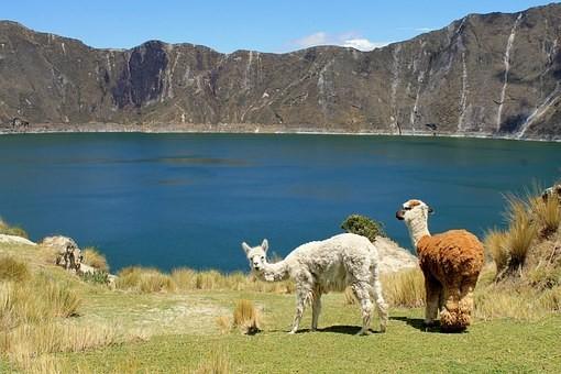 Photos from #Ecuador #Travel - Image 53