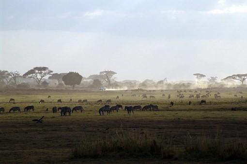Photos from #Kenya #Travel - Image 42