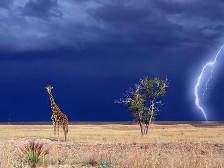 Photos from #Kenya #Travel - Image 53