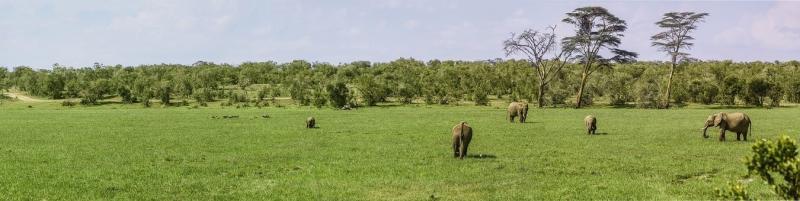 Photos from #Kenya #Travel - Image 5