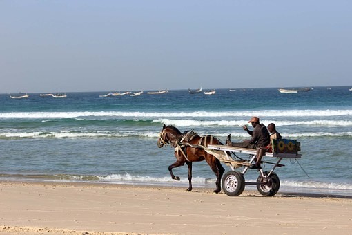 Photos from #Senegal #Travel - Image 54