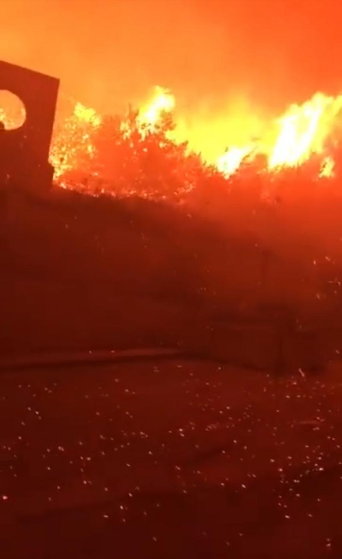#حرائق في غابات #لبنان #لبنان_يحترق - صورة 7