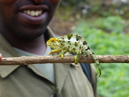 Photos from #rwanda #Travel - Image 20
