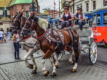 Photos from #Poland #Travel - Image 127