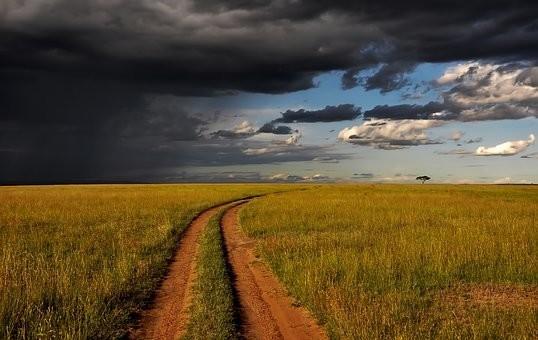 Photos from #Kenya #Travel - Image 64