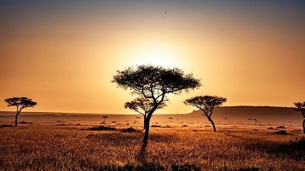 Photos from #Kenya #Travel - Image 2