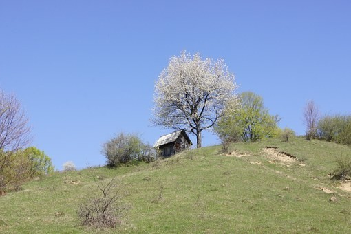 Photos from #Romania #Travel - Image 120