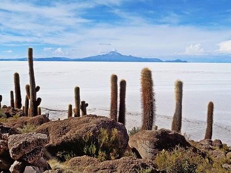 Photos from #Bolivia #Travel - Image 98
