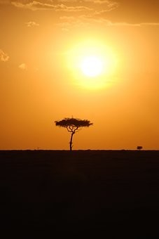 Photos from #Kenya #Travel - Image 8