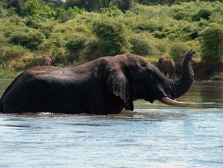 Photos from #Zambia #Travel - Image 5