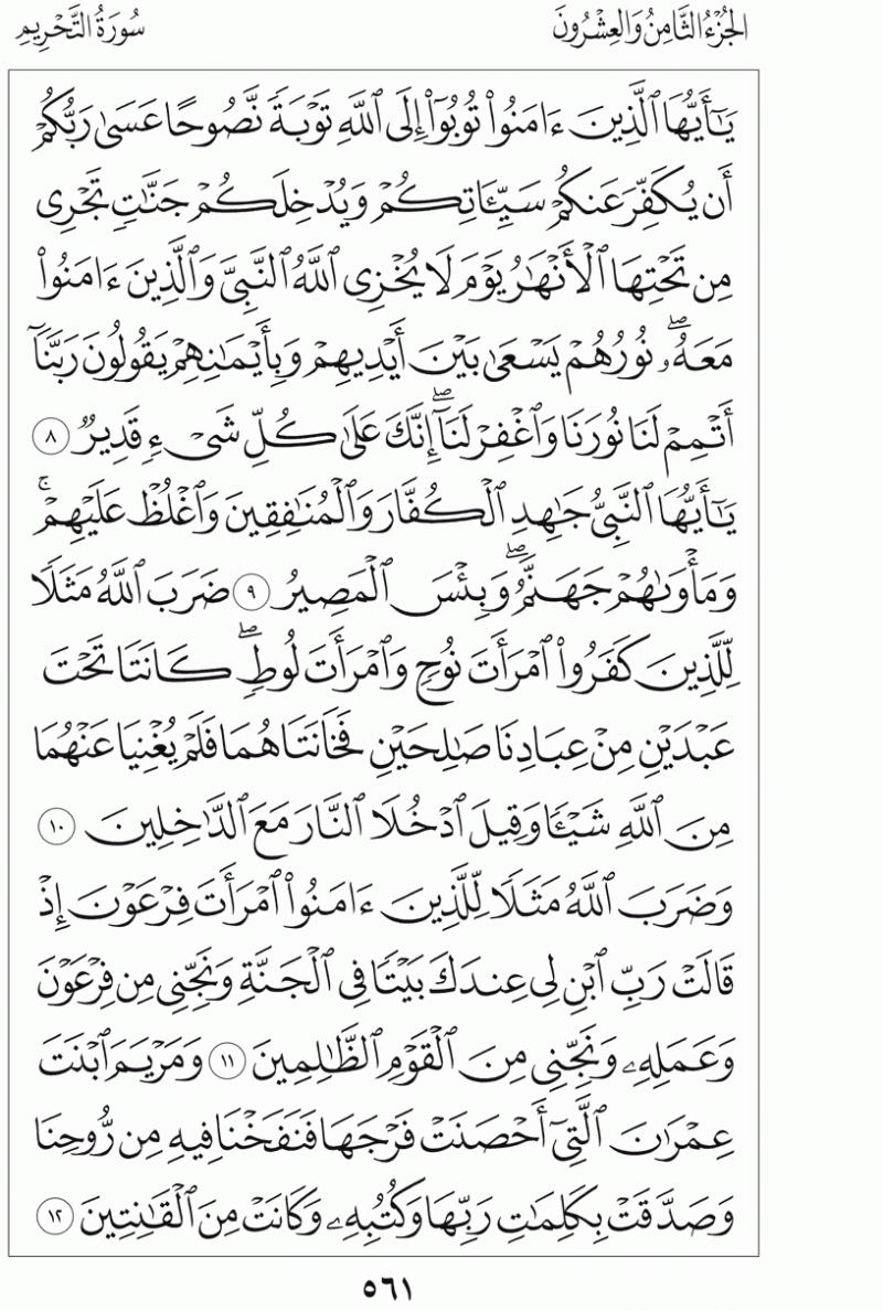 #القرآن_الكريم بالصور و ترتيب الصفحات - #سورة_التحريم صفحة رقم 561