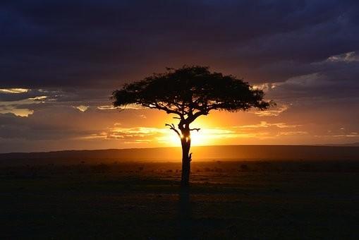 Photos from #Kenya #Travel - Image 57