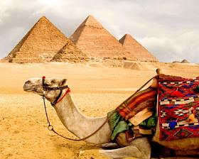 صور نادرة من #تاريخ #مصر #Egypt ال#قديم #الفراعنة - صورة 63