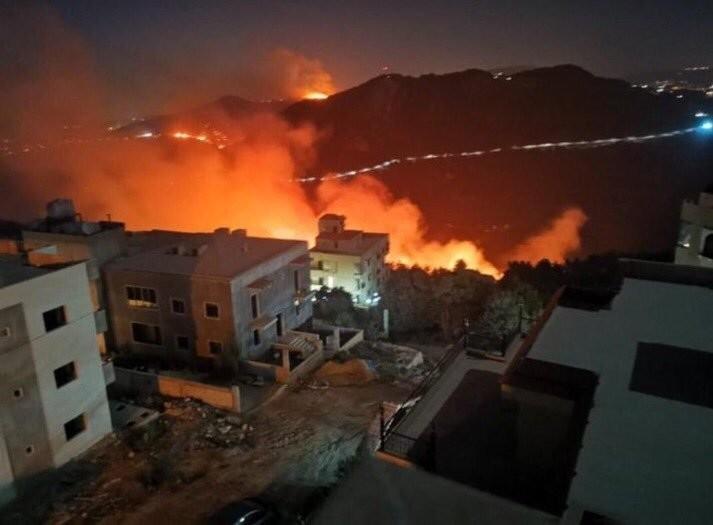 #حرائق في غابات #لبنان #لبنان_يحترق - صورة 3