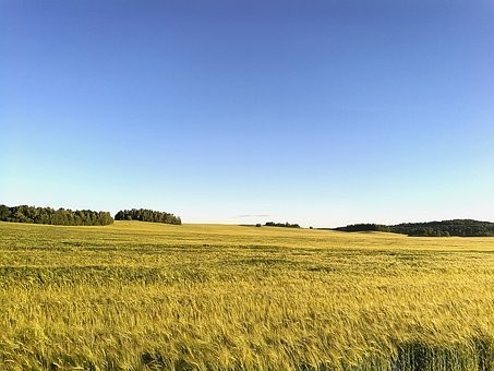 Photos from #Belarus #Travel - Image 53