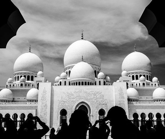 صور #مسجد #الشيخ_زايد في #أبوظبي #الإمارات - صورة 54