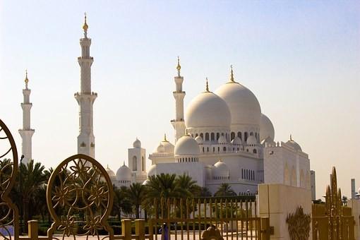 صور #مسجد #الشيخ_زايد في #أبوظبي #الإمارات - صورة 135
