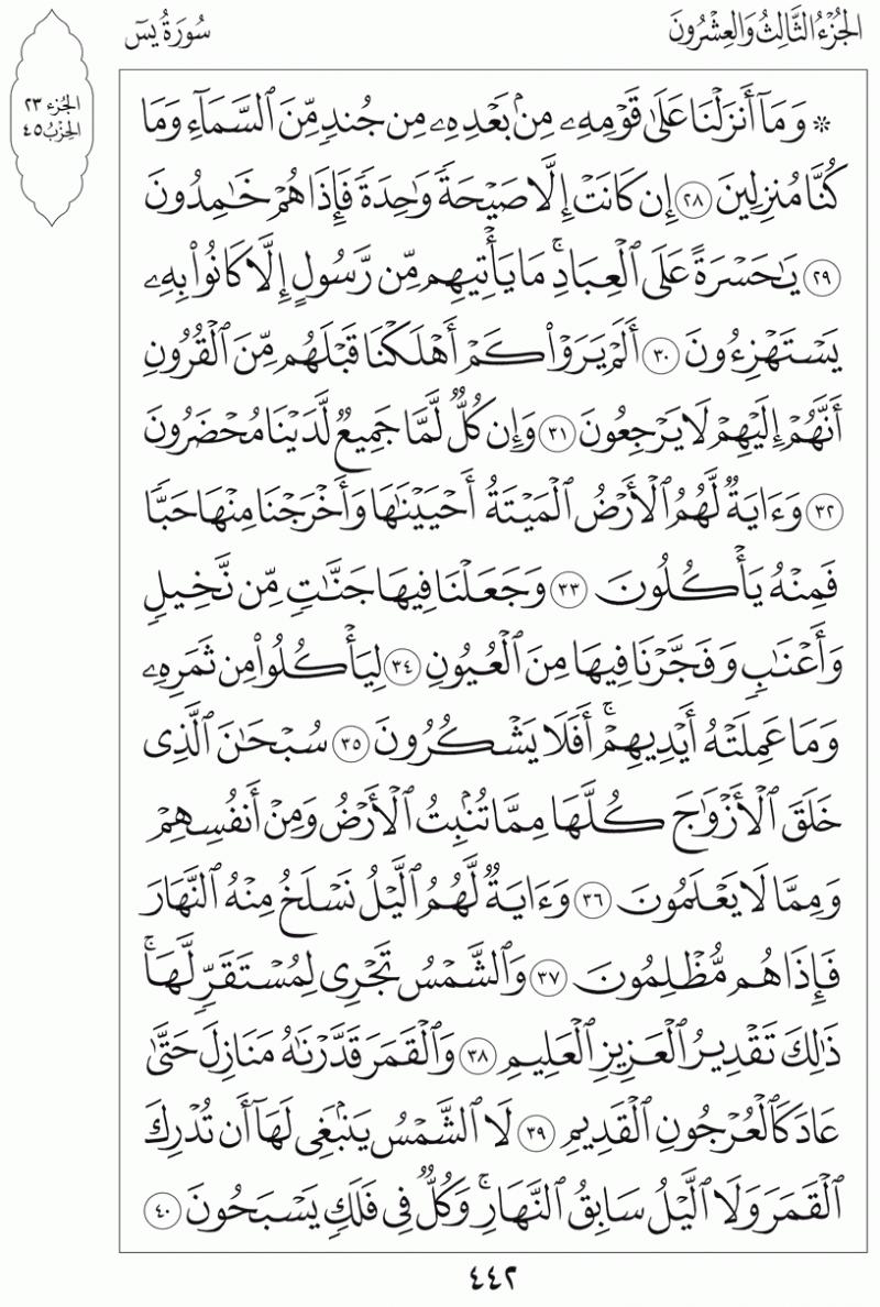 #القرآن_الكريم بالصور و ترتيب الصفحات - #سورة_يس صفحة رقم 442