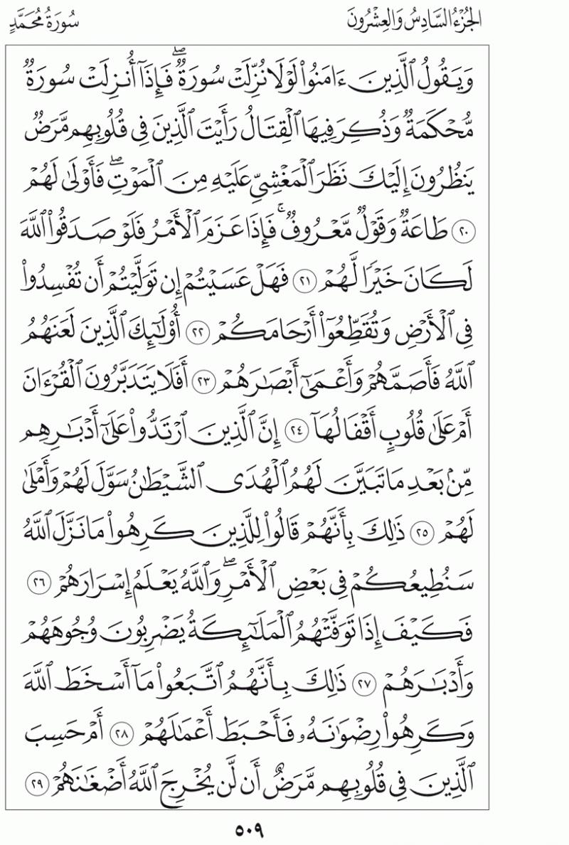 #القرآن_الكريم بالصور و ترتيب الصفحات - #سورة_محمد صفحة رقم 509