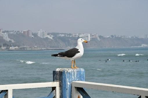 Photos from #Peru #Travel - Image 9