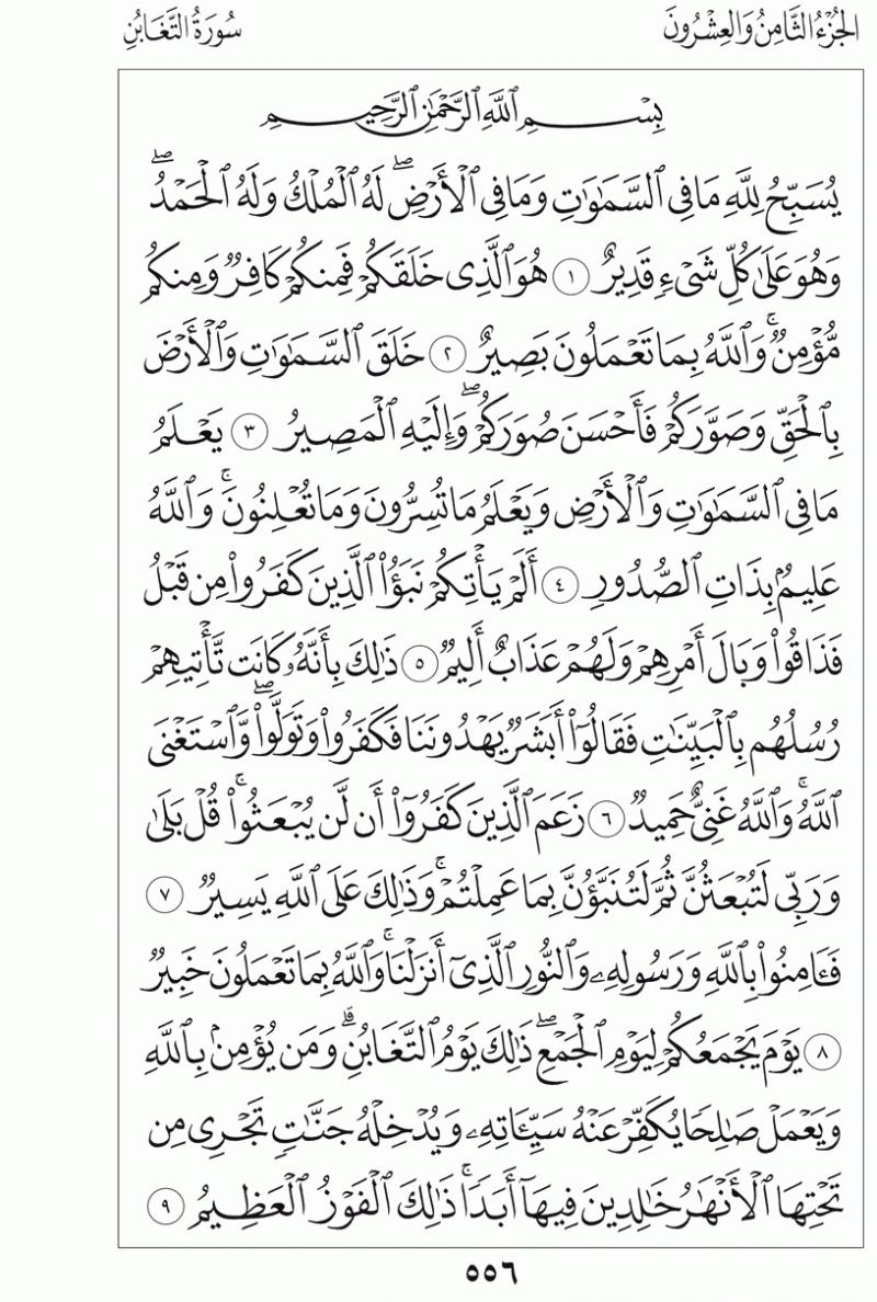 #القرآن_الكريم بالصور و ترتيب الصفحات - #سورة_التغابن صفحة رقم 556