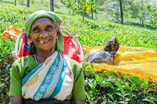 Photos from #SriLanka #Travel - Image 44