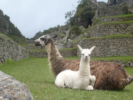 Photos from #Peru #Travel - Image 17