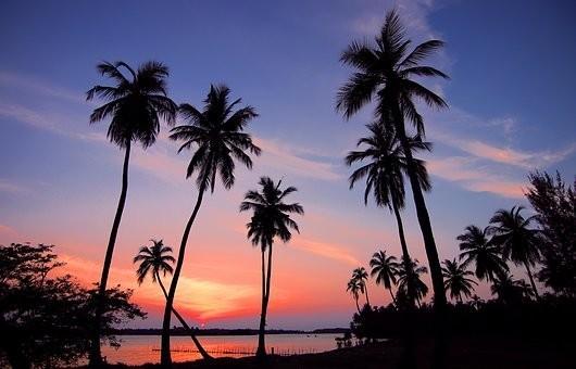 Photos from #SriLanka #Travel - Image 90