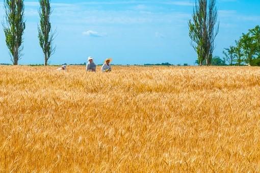 Photos from #Ukraine #Travel - Image 101