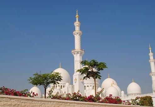 صور #مسجد #الشيخ_زايد في #أبوظبي #الإمارات - صورة 166