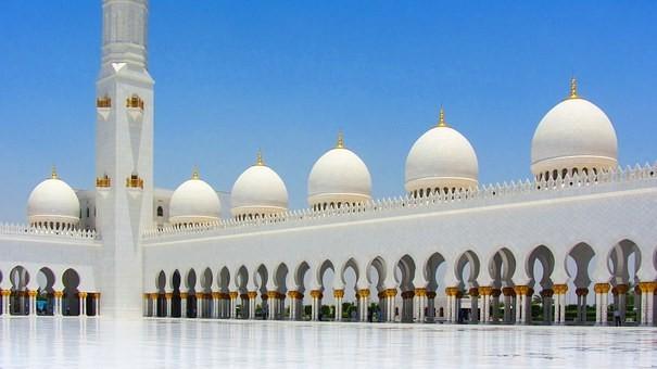 صور #مسجد #الشيخ_زايد في #أبوظبي #الإمارات - صورة 117