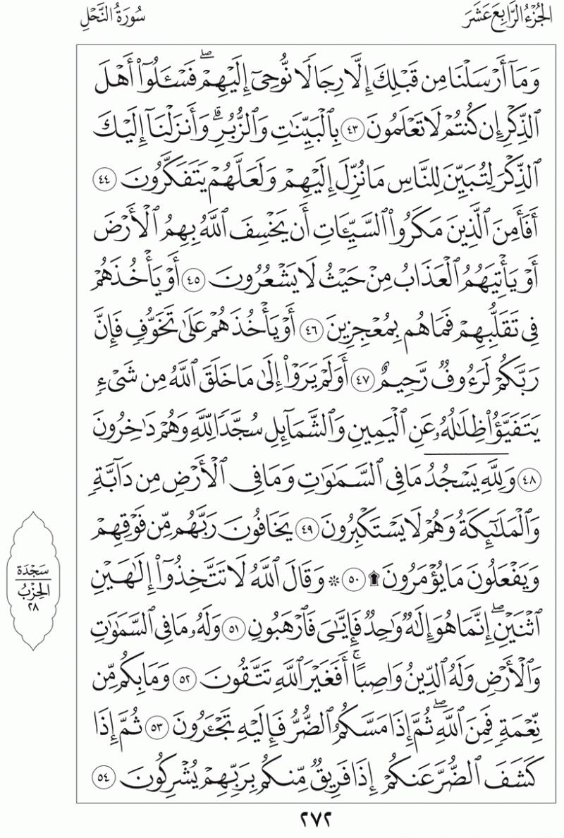 #القرآن_الكريم بالصور و ترتيب الصفحات - #سورة_النحل صفحة رقم 272