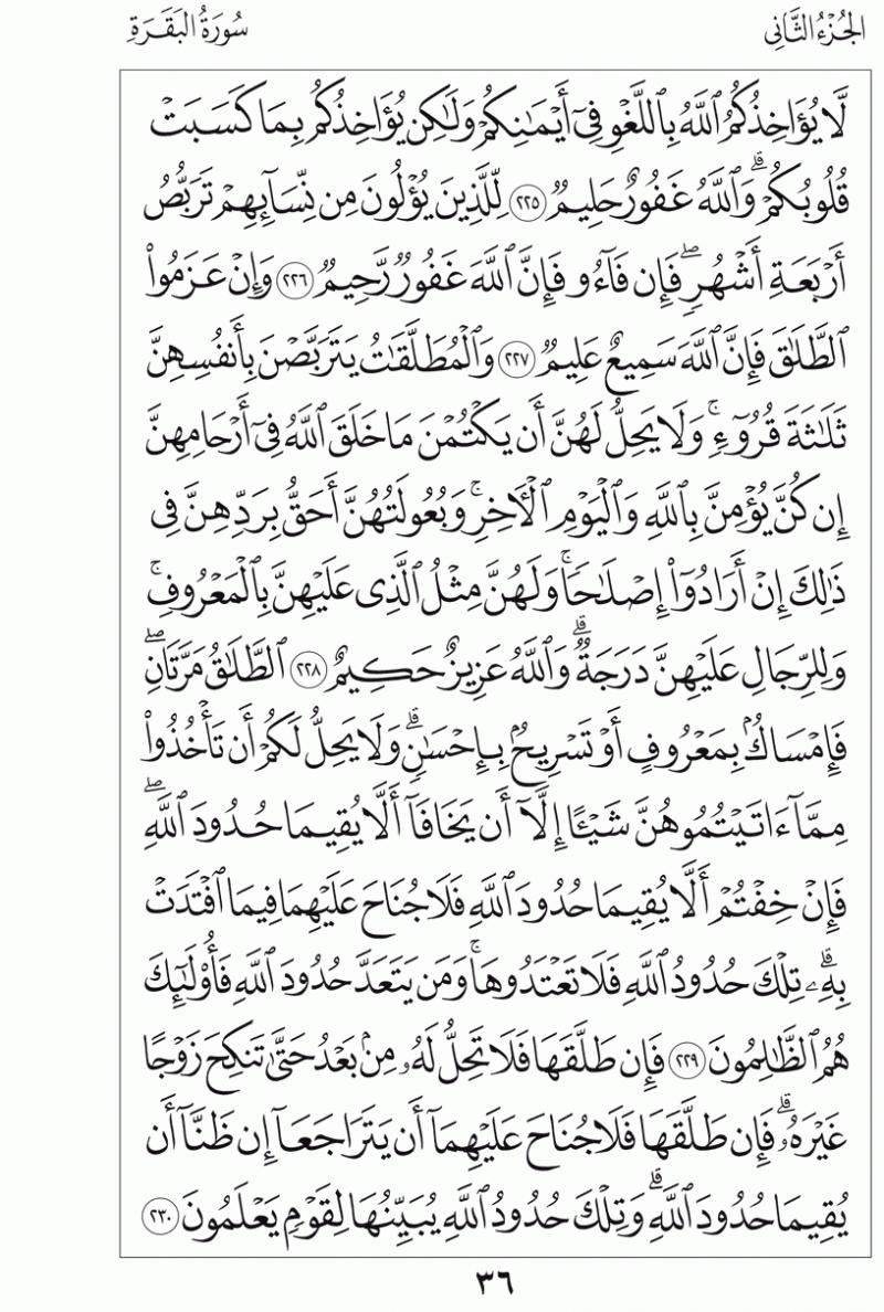#القرآن_الكريم بالصور و ترتيب الصفحات - #سورة_البقرة صفحة رقم 36