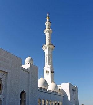 صور #مسجد #الشيخ_زايد في #أبوظبي #الإمارات - صورة 49