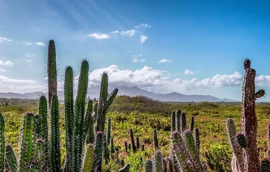 Photos from #Venezuela #Travel - Image 37