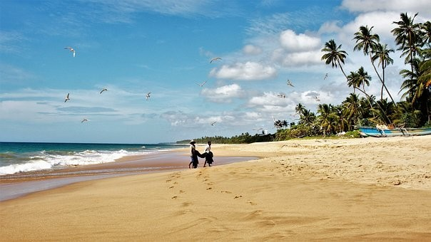 Photos from #SriLanka #Travel - Image 22