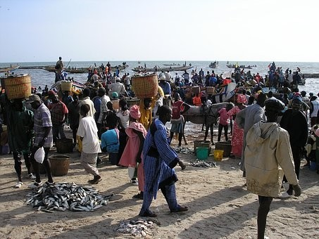 Photos from #Senegal #Travel - Image 81