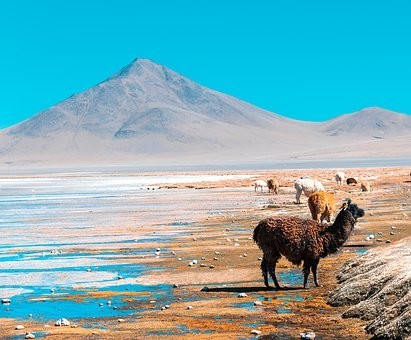 Photos from #Bolivia #Travel - Image 143