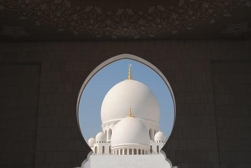 صور #مسجد #الشيخ_زايد في #أبوظبي #الإمارات - صورة 96