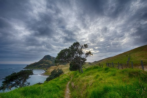 Photos from #New_Zealand #Travel - Image 55