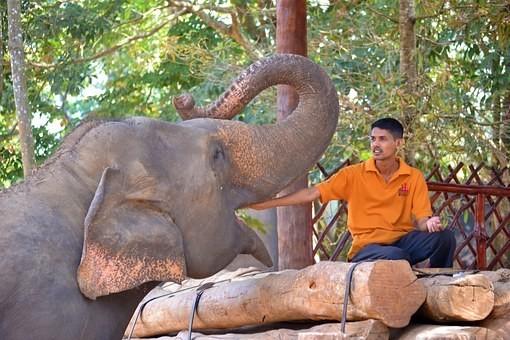 Photos from #SriLanka #Travel - Image 76
