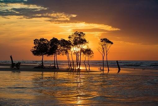 Photos from #Australia #Travel - Image 80