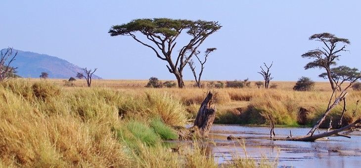 Photos from #Tanzania #Travel - Image 67